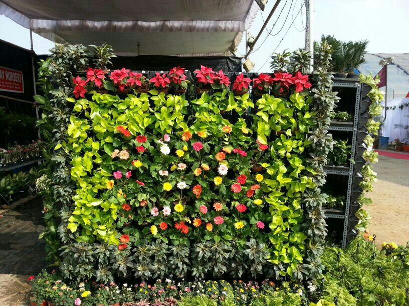 Como-Montar-Um-Jardim-Vertical-Baratinho-2