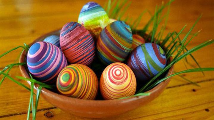 Eco-Eggs-2