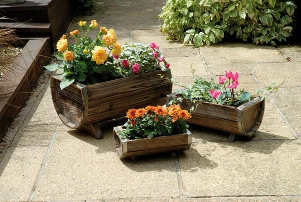 Planters-11-The-ART-In-LIFE