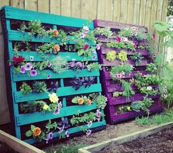 creating-a-vertical-garden-and-flower-diy-from-euro-pallets-17-408