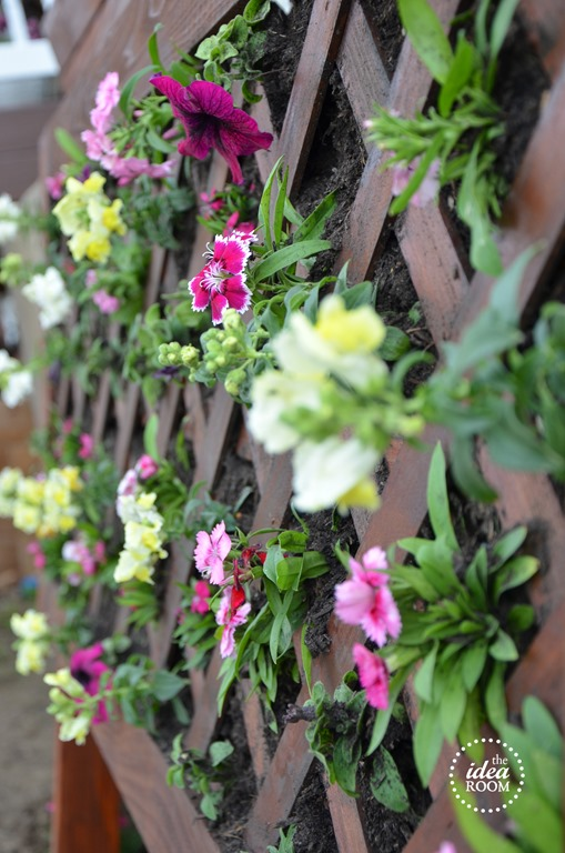 vertical-flower-garden-6