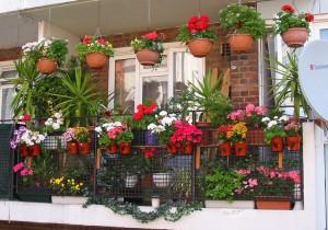 Front door garden design ideas the home design.