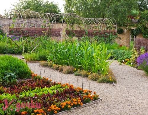 garden_french4-500x388