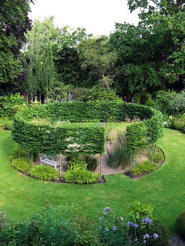 A round gravel garden cut out of a sunny lawn, encircled by a pleached hornbeam hedge. Summer.