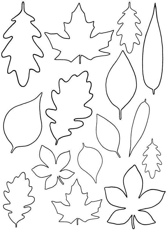 Листочки от цветов шаблоны для вырезания